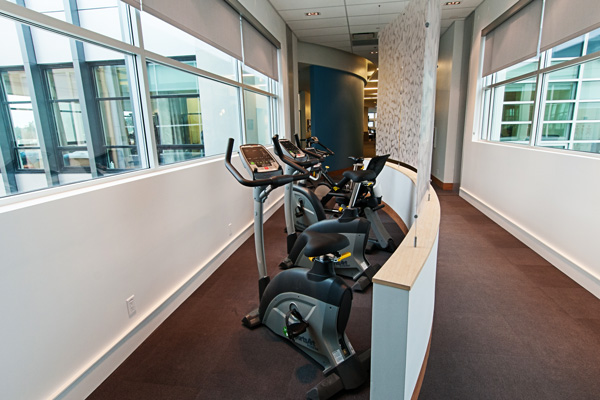 Physical therapy exercise bikes